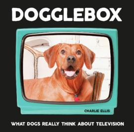 Dogglebox