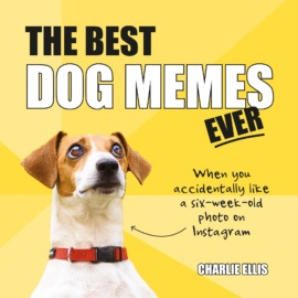 The Best Dog Memes Ever