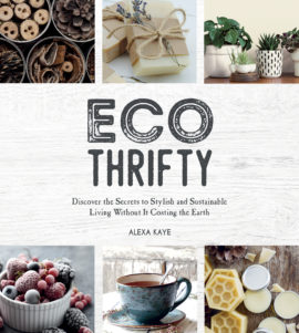Eco-Thrifty