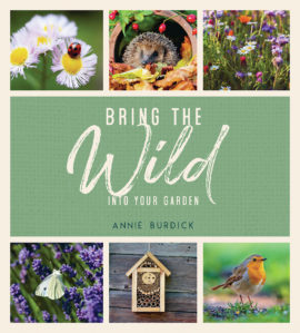 Bring the Wild into Your Garden